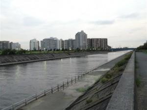 境川河口夕方