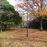 敷地内は四季を感じられる、緑豊かな環境です。